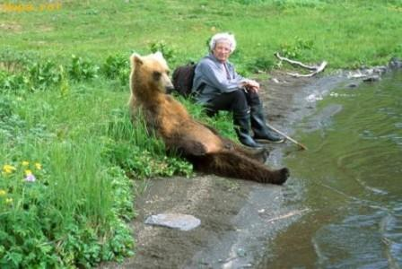 A resting bear by the river