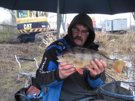 Mick Haskell with a hard won 2lb+ Perch on a foul day