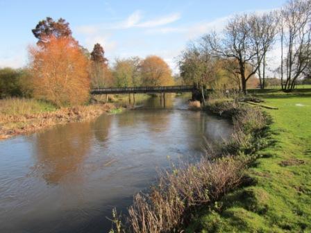 School-Bridge-Picture