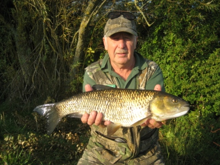 "Brian Willson with a 5lb 7oz chub that only appears on here as a passing angler ""insisted"" on taking a photo. More likely Brian didn't want this photo up on here as he is embarrassed that his relation Rick caught a larger chub (see picture below)"