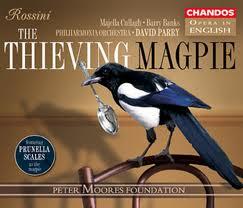 thieving-magpie