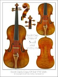 For those who are unsure what a violin is, this picture has been provided as a means of identification.