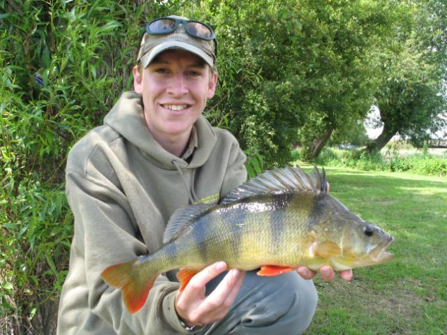 Hugh Goldsmith with a lovely looking perch of 2lb 8oz