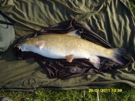 Jed Place landed a number of barbel during January including this plump 11lb 5oz specimen