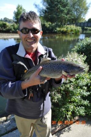 Sea-trout